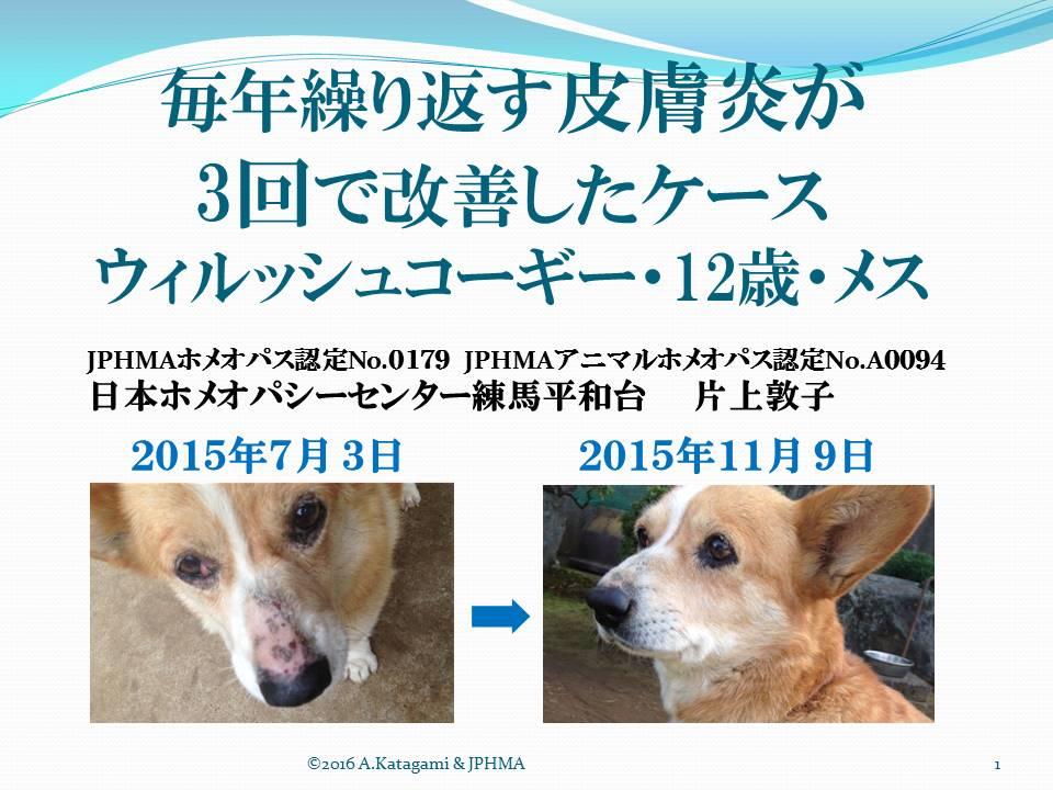 2016年第17回学術大会発表【毎年繰り返す犬の皮膚炎が3回で改善したケース】