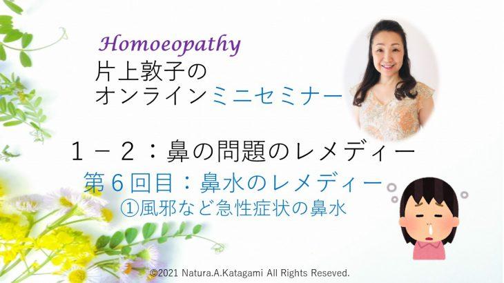 片上敦子のオンラインミニセミナー 第6回目「鼻の問題のレメディー」        ①「風邪などの鼻水のレメディー」