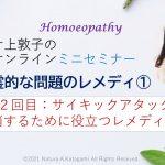 片上敦子のオンラインミニセミナー第12回目【霊的な問題のレメディ①】       『サイキックアタックを解消するために役立つレメディー』とその使い方をアップしました。